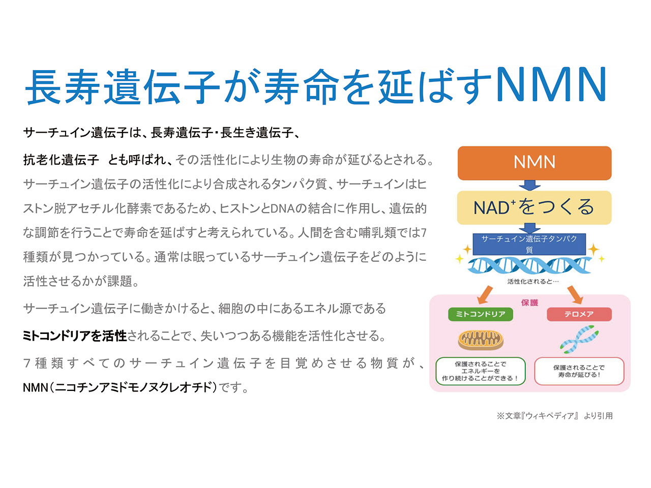 長寿遺伝子が寿命を延ばすNMN